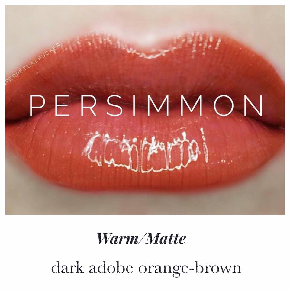 lipsense-persimmon-warm-matte-liquid-lip-color.jpg